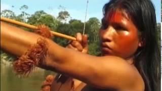 Selva Mariri | В дебрях Амазонии. Часть 1 Дальше от городов.