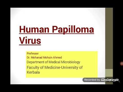 Papilloma vírus és kezelés
