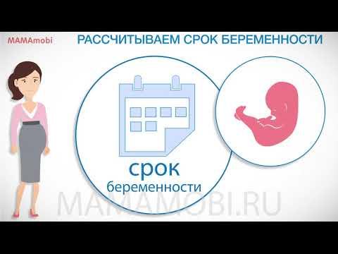 Калькулятор беременности и даты родов: как рассчитать самостоятельно. MamaMobi 2019