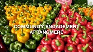 Community Engagement at Tangmere Airfield Nurseries Ltd
