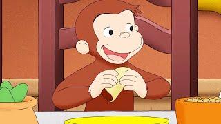 Curious George 🐵Tortilla Express | Cartoons For Kids | WildBrain Cartoons