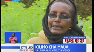 Kilimo cha maua cha vutia wakulima wengi katika kaunti ya Nyeri