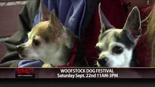 Upcoming Pet Friendly Events for You and Your Pal