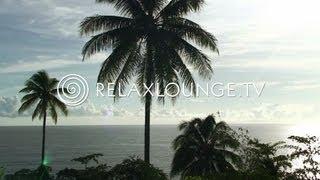 Loungemusik - Gitarren Musik, Harmonie, Wellness & Paradies - OCEAN LOUNGE