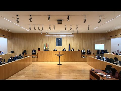 Pleno ordinario de la Diputación de Málaga. Octubre 2020
