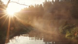 preview picture of video 'Jedno z rozgałęzień rzeki Supraśl'