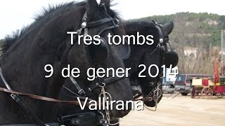 preview picture of video 'Tres tombs - Vallirana  2014'