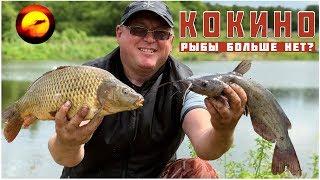 Платная рыбалка в кокино каширский район