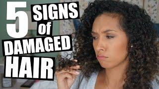 Top 5 Signs of Damaged Hair   RisasRizos