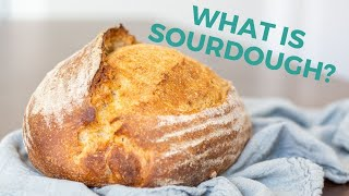 Introduction to Sourdough for Beginners, What is Sourdough?