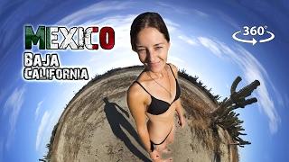Take a trip with Kombi Life as they adventure through Baja California