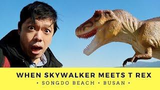 BUSAN SOUTH KOREA 🇰🇷   SONGDO BEACH Skywalker meets T Rex