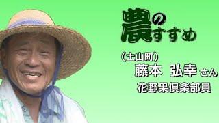 園芸9月「ごぼうの収穫と栽培」