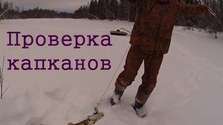 Зима ловля щуки на капкан