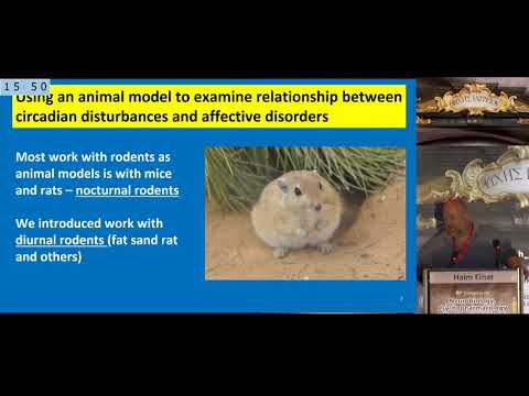 Einat H. - Circadian rhythms depression and type II diabetes mellitus: exploring the relationship using a unique model animal