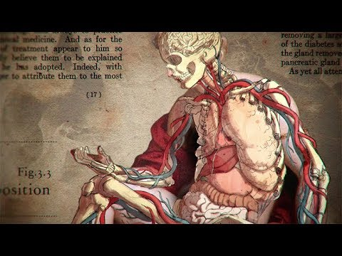 A Brief History of Fat (2018)- A short view into the influence fat has in our bodies [20:33]