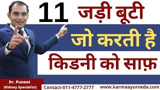 11 Ayurvedic Herbs to Flush and Cleanse the Kidney Tract by Dr Puneet