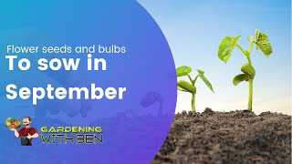 Flower Seeds and bulbs to sow in September - Easy to grow Flowers