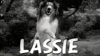Lassie  1954 - 1973 Opening and Closing Theme (With the Lone Ranger Snippet)