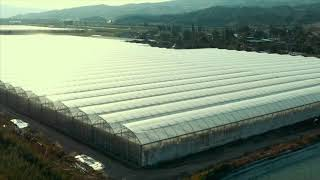 WE MANUFACTURE WORLD-CLASS COIR PRODUCTS FOR CULTIVATION SOLUTIONS