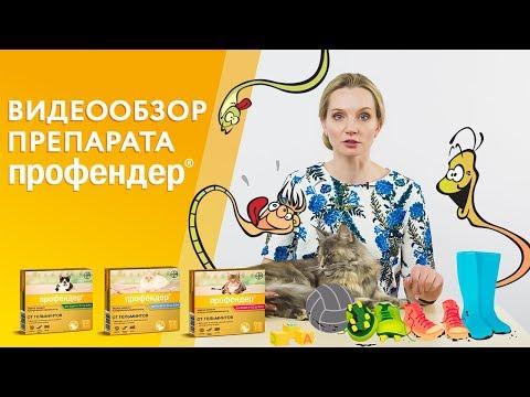 Капли Профендер от глистов для кошек. Видеообзор от производителя.