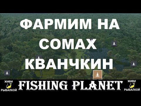 Озеро Кванчкин - фарм на сомах в игре Fishing Planet