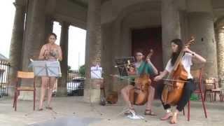 6ème édition du Festival de la Viole de Gambe - 2012