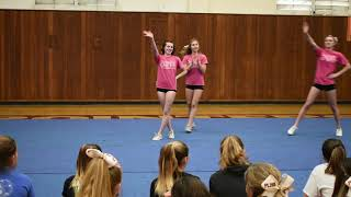 PLHS Cheer Tryout Example Video