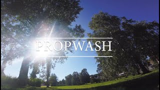 Propwash! - Emax hawk 5 freestyle FPV