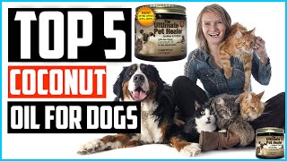 Top 5 Best Coconut Oil For Dogs Review in 2020