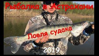 Новый рычан астраханская область рыбалка