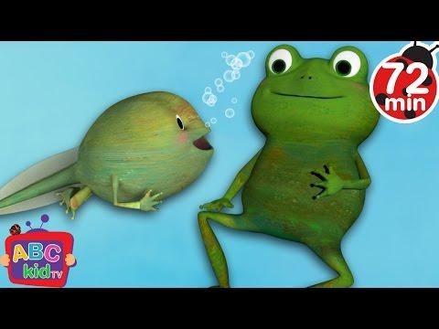 Frog Song | + More Nursery Rhymes & Kids Songs - ABCkidTV