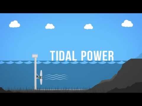Tidal Fence