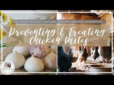 , title : 'NATURALLY Prevent and TREAT Chicken MITES and LICE