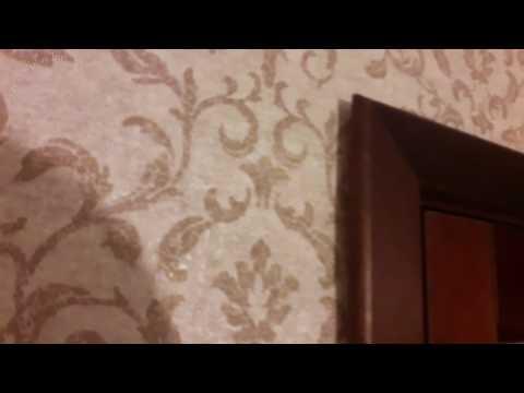 Видео Двери Премьер Плюс массив ольхи