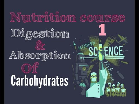 Biochemistry Nutrition course lecture ( 1 ) - carbohydrates digestion , absorption