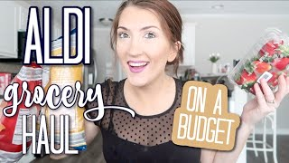 Aldi Grocery Haul 2020   Family of 4   $100 Budget Weekly Food Shopping