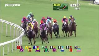 Craziest horse racing DEBUT ever - #6 Pakistan Stars from Last to First!! Hong Kong (2016)