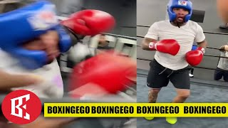 GERVONTA SPARRING IVAN BREAKS THE INTERNET; KEEPS THE TANK HATE TRAIN LIT