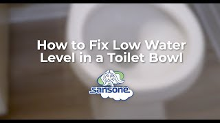 4 Reasons for Low Water Level in your Toilet Bowl & How to Fix It