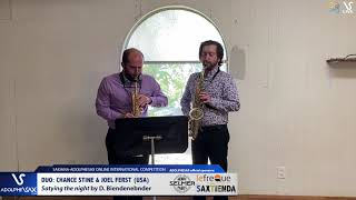 DUO D. STINE & J. FERST play Staying the night by D. Bindenbender #adolphesax