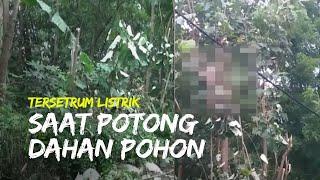 Video Detik-detik Warga Tersetrum Listrik saat Potong Dahan Pohon, Selamat Berkat Reaksi Warga