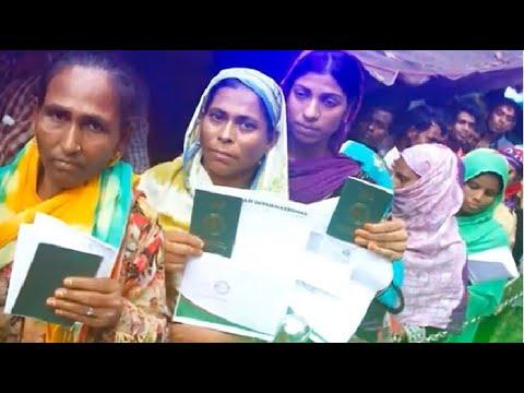 মুরাদনগরের দুই ভাইয়ের সৌদিতে নারী শ্রমিকের নামে যৌনদাসী পাঠানোর সিন্ডিকেট