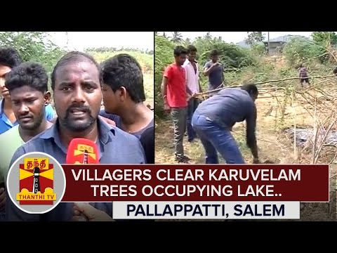 Villagers-Clear-Karuvelam-Trees-Occupying-their-Primary-Water-Source-Salem-Thanthi-TV