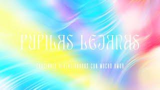 Pupilas lejanas - Fabiana Cantilo (cover)