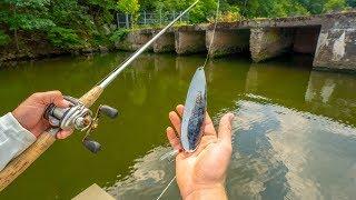 JON BOAT FISHING TOURNAMENT! Catching DEEP Summer Bass