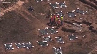 Fort Bend County judge stops work to move remains at unmarked cemetery