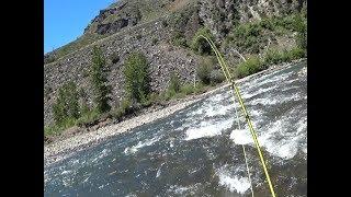 Truckee River Fishing - June 2, 2018