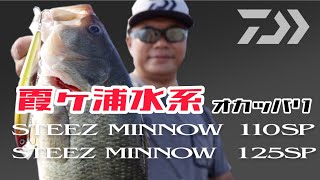Daiwa steez minnow 125sp sr