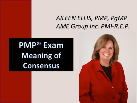 PMP® Exam Prep on meaning of Consensus with Aileen - YouTube